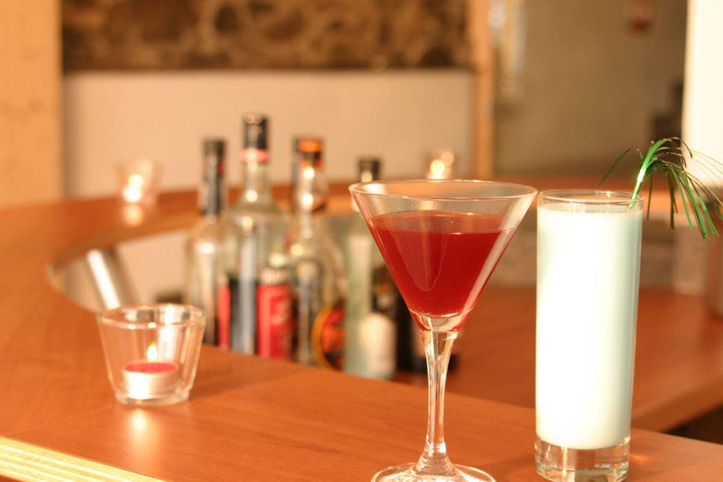 Bio Ferienhof Hagspiel Wellness Drinks